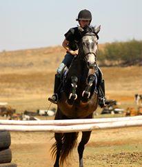 5 Pet Peeves: Riding Schools (4/5)