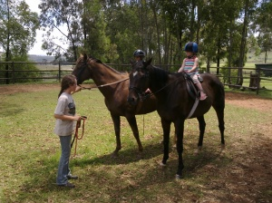 Teaching on my two giant colleagues from the riding school