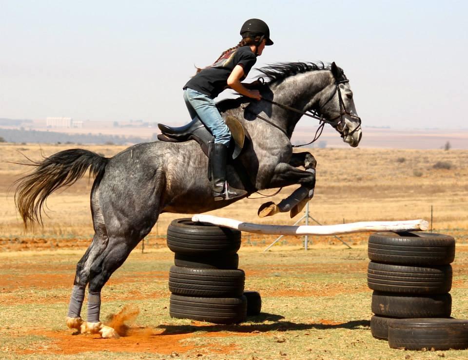 5 Pet Peeves: Riding Schools (2/5)