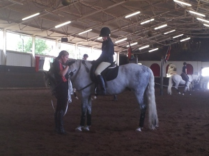 Taking a lunging lesson at the SA Lipizzaners