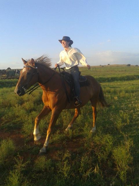 Meet the Rider (3/5)