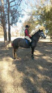 Loose reins! :D