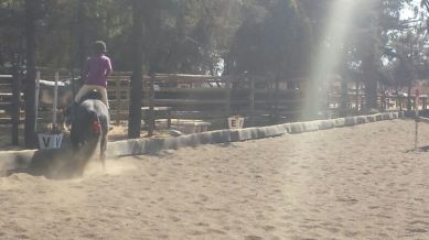 Staying in the warmup arena: FAIL.