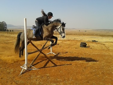 The next day at home: round jumping. Forgive me for my hair please