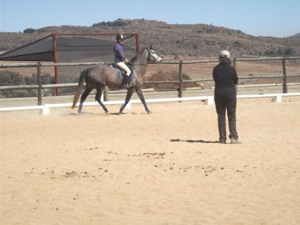 Oh, we're having a dressage lesson? I think I might be a giraffe today