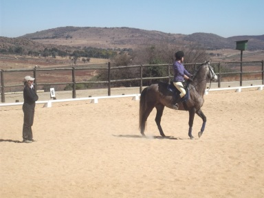 That time I paid lots of money and called in lots of favours for a lesson with an international dressage instructor and then we shied at baboons for an hour.