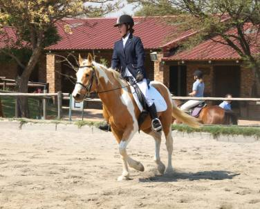 I realise I failed at remembering the halt at the start of Prelim 3. Reed fails to stretch in his stretchy trot.