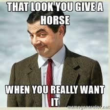 HorseMeme1